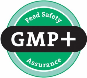 16-logo-gmp-international-zoom